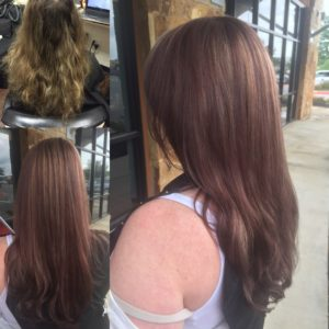 organic hair color, highlights, brown hair color